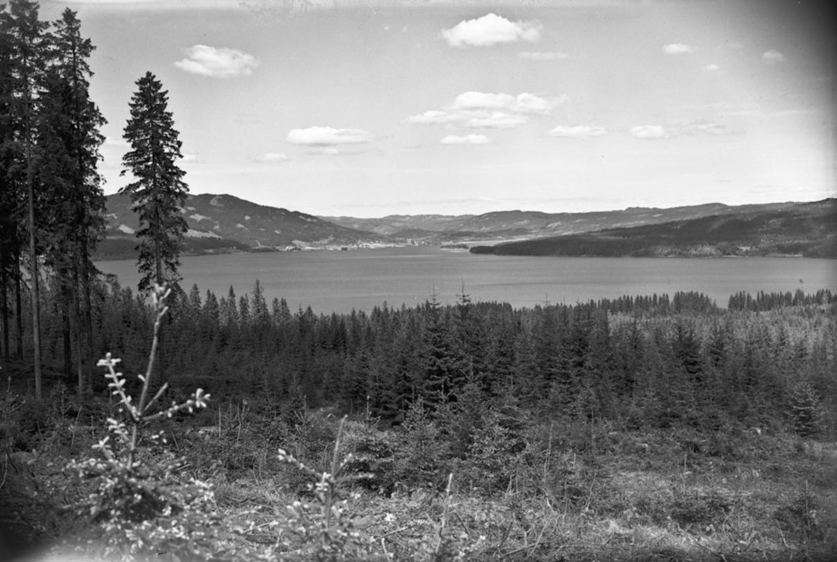 Landskap ved innsjø