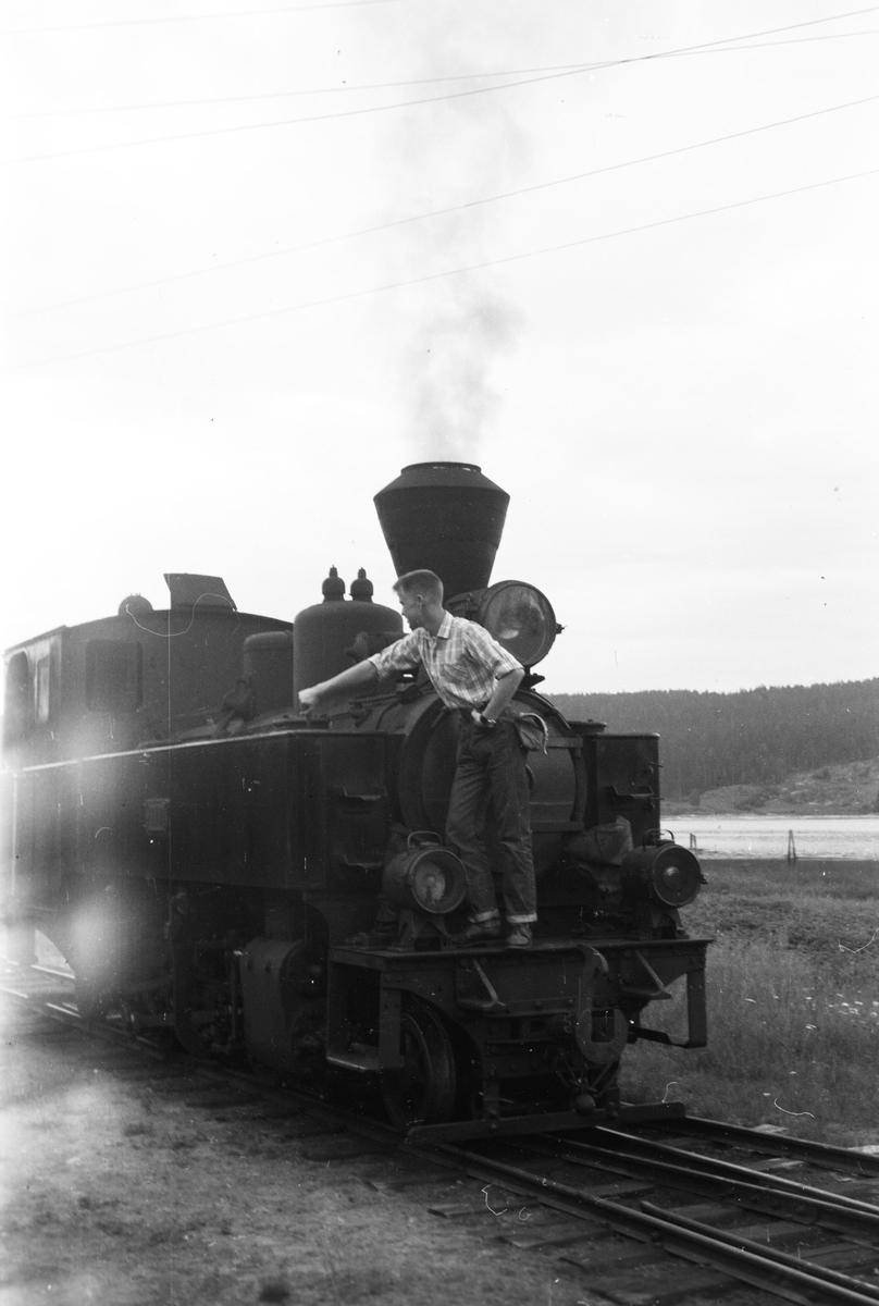 Urskog-Hølandsbanens damplokomotiv 7 Prydz.