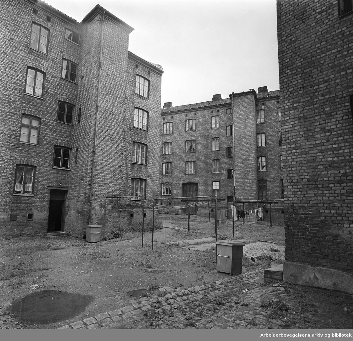 Gråbeingårdene i Lakkegata,.juli 1975