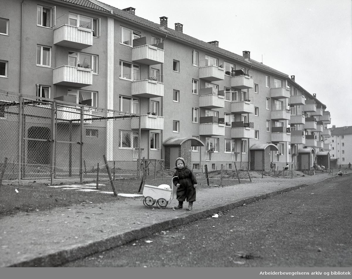 Teisen,.oktober 1953