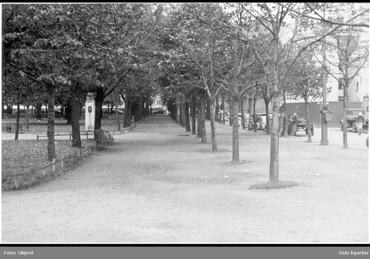 Nordre del av Grev Wedels plass (sett mot vest) med nedstigningstårn, gangveier og alle-trær. Parkering langs Myntgata. Albumtittel: Gråbeinsletta og anlegg ved Sagene kirke, Grev Wedels plass, Grønland