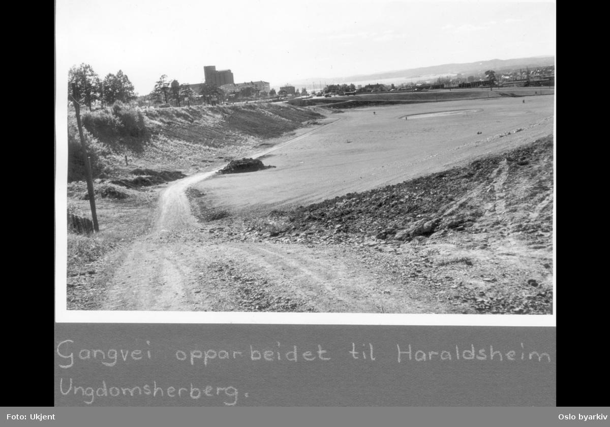 """Muselunden. Turvei fra Haraldsheim langs Trondheimsveien mot Sinsenkrysset. Kornsiloen på Sinsen i bakgrunnen. Albumtittel: """"Turveier"""""""