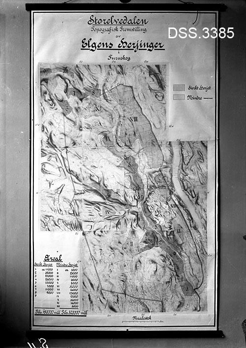 """Reproduksjon av kart som skal illustrere elgskader på furuskog i Stor-Elvdal kommune i Hedmark.  Ved hjelp av fargenyanser (som kommer dårlig fram på svart-hvitt-reproduksjonen) er det vist hvilke områder som er sterkt herjet og hvilke som har mindre skader.  Nederst i venstre hjørne finner vi en arealtabell over """"sterkt herjete"""" og """"mindre herjete"""" arealer."""