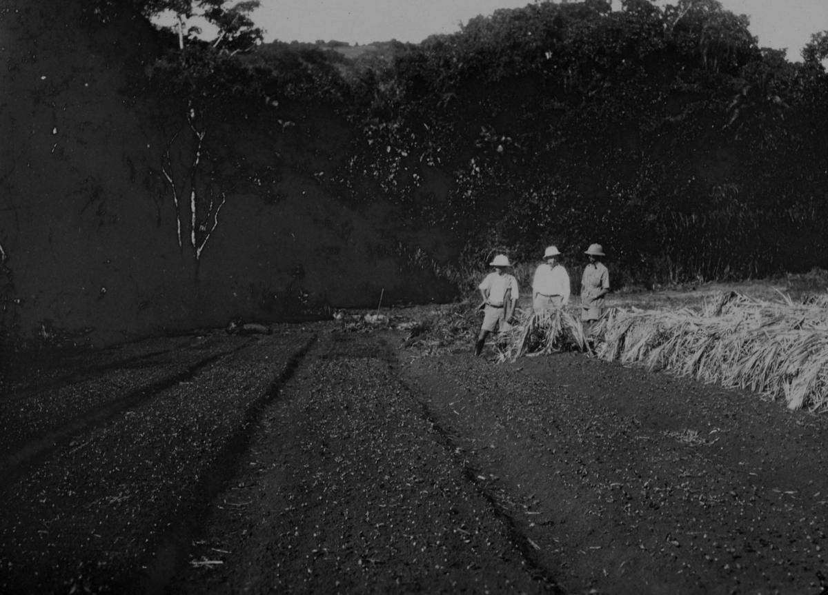Tre menn i tropeutstyr i Uganda eller Kenya?