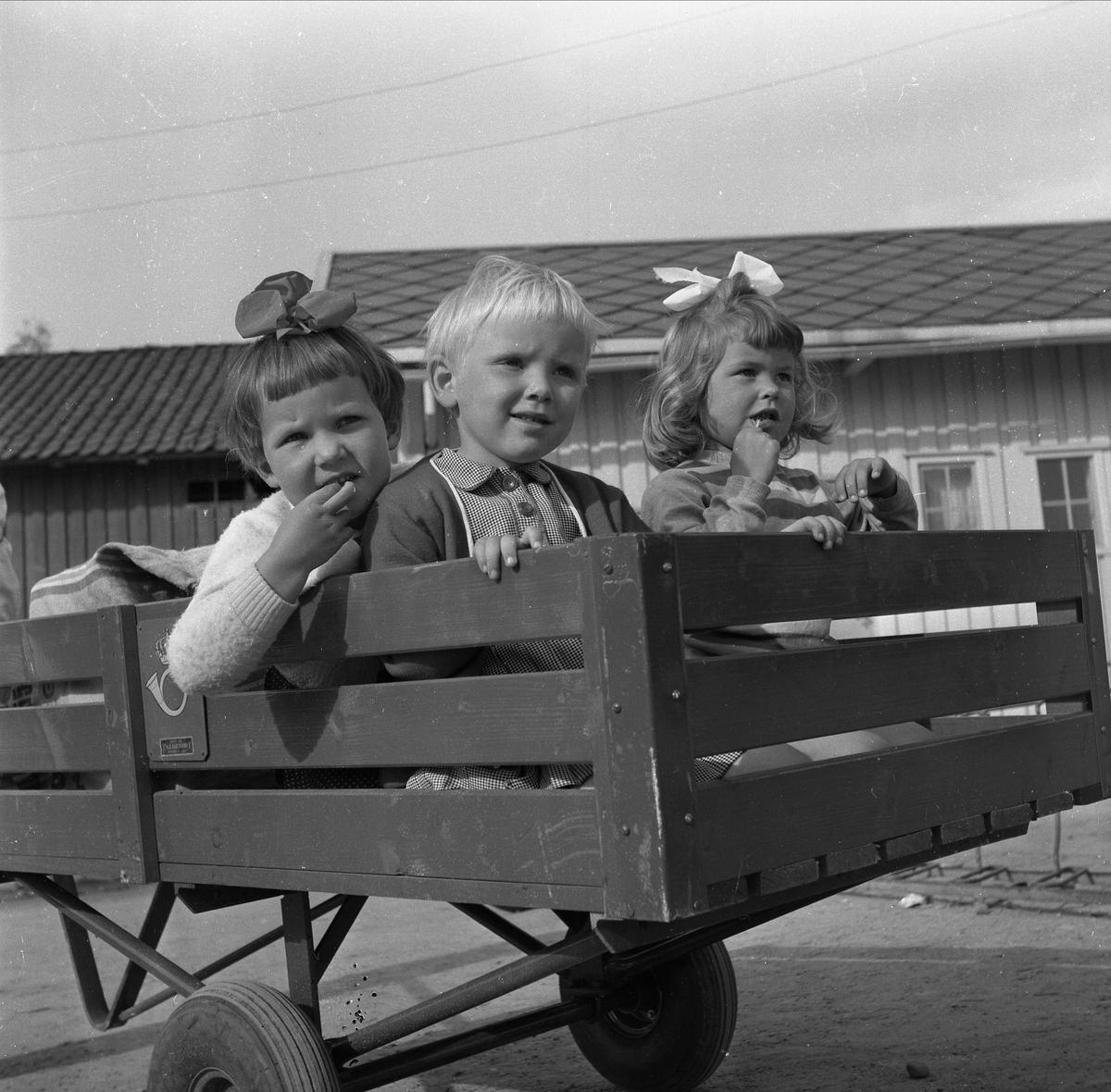 BARN I POSTTRALLE, RAGNHILD BRONKEN, INGUN STERUD, OG TOVE AAS. JENTER MED SLØYFE I HÅRET. SE HAMAR STIFTSTIDENDE 27-5-1959. SE BOKA PÅ ET HUNDNREDELS SEKUND, LØTEN OG OMEGN 1957-1964 I ORD OG BILDERAV HELGE REISTAD S. 236.