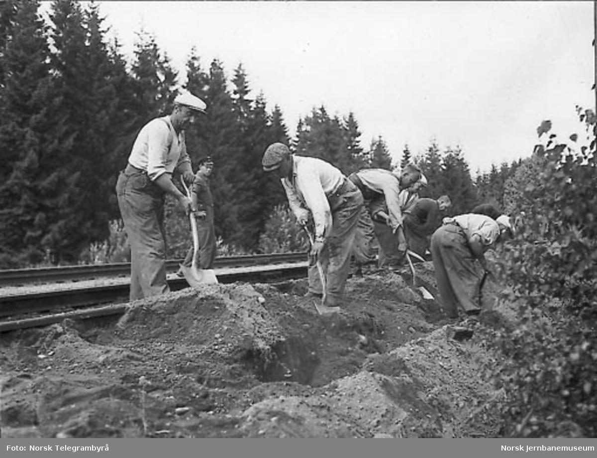 Kabelnedlegging ved Kløfta og Lindeberg
