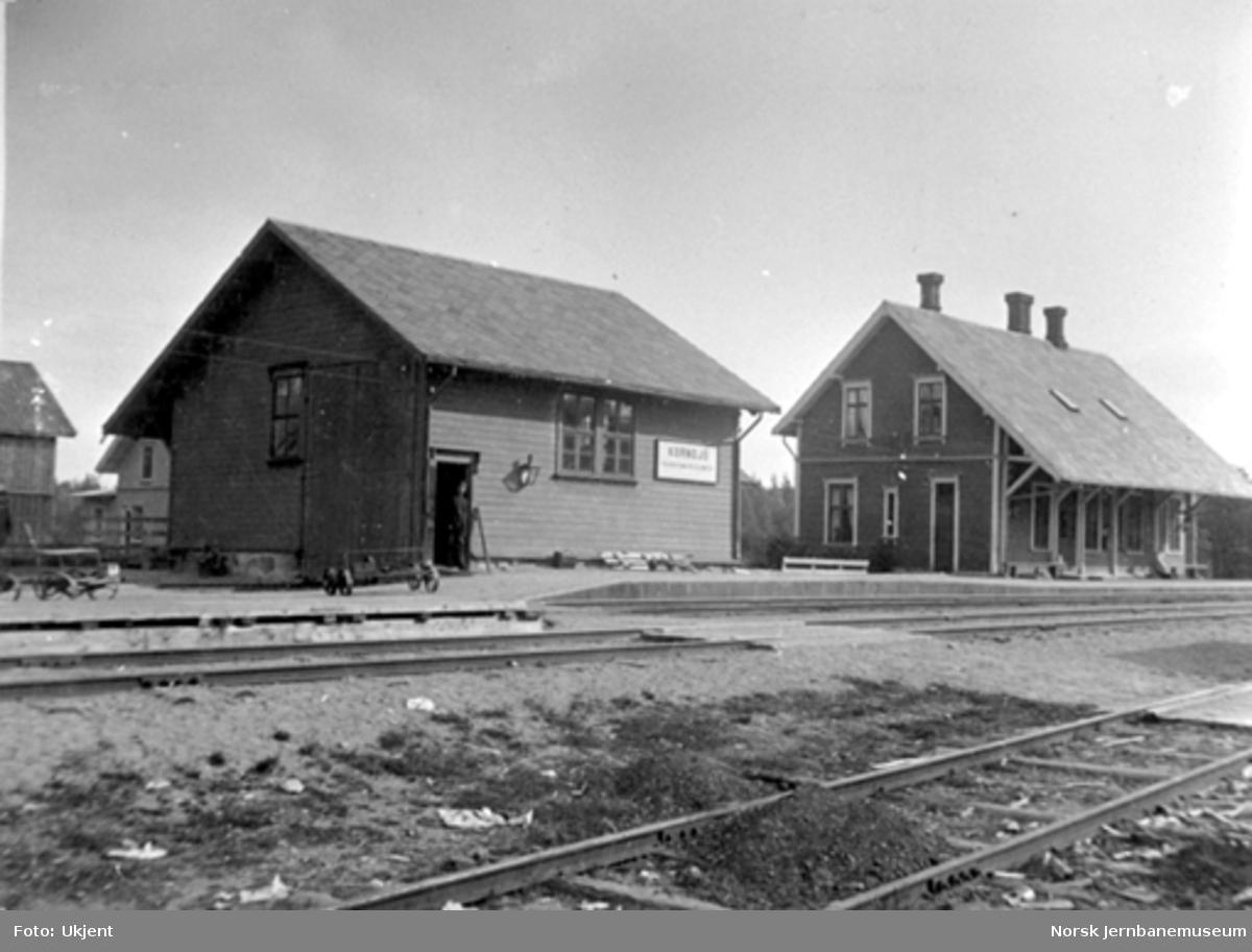 Kornsjø stasjon med stasjonsbygning og godshus