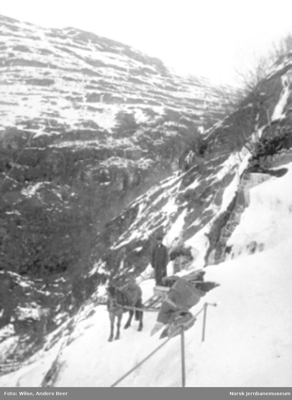 Hest med lass på anleggsvegen i Flåmsdalen vinterstid