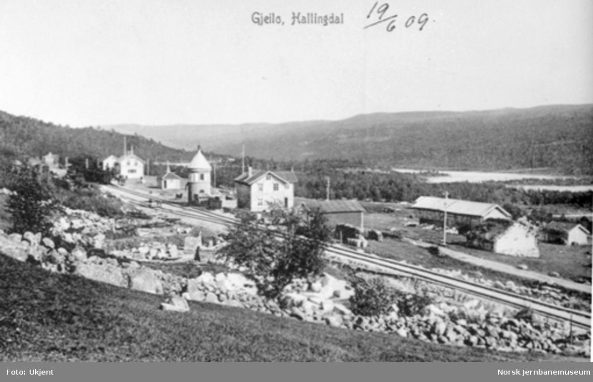 Geilo stasjon, oversiktsbilde
