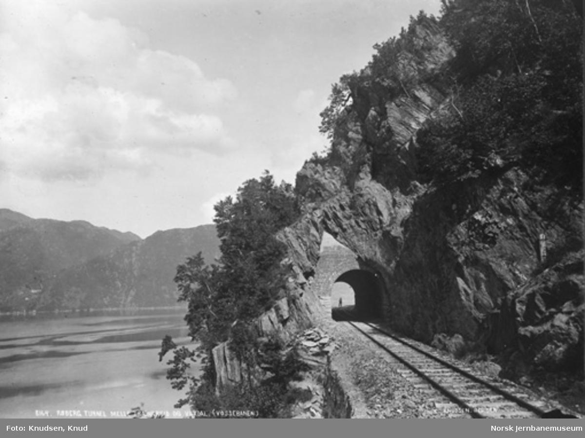 Røberg tunnel mellom Trengereid og Vaksdal