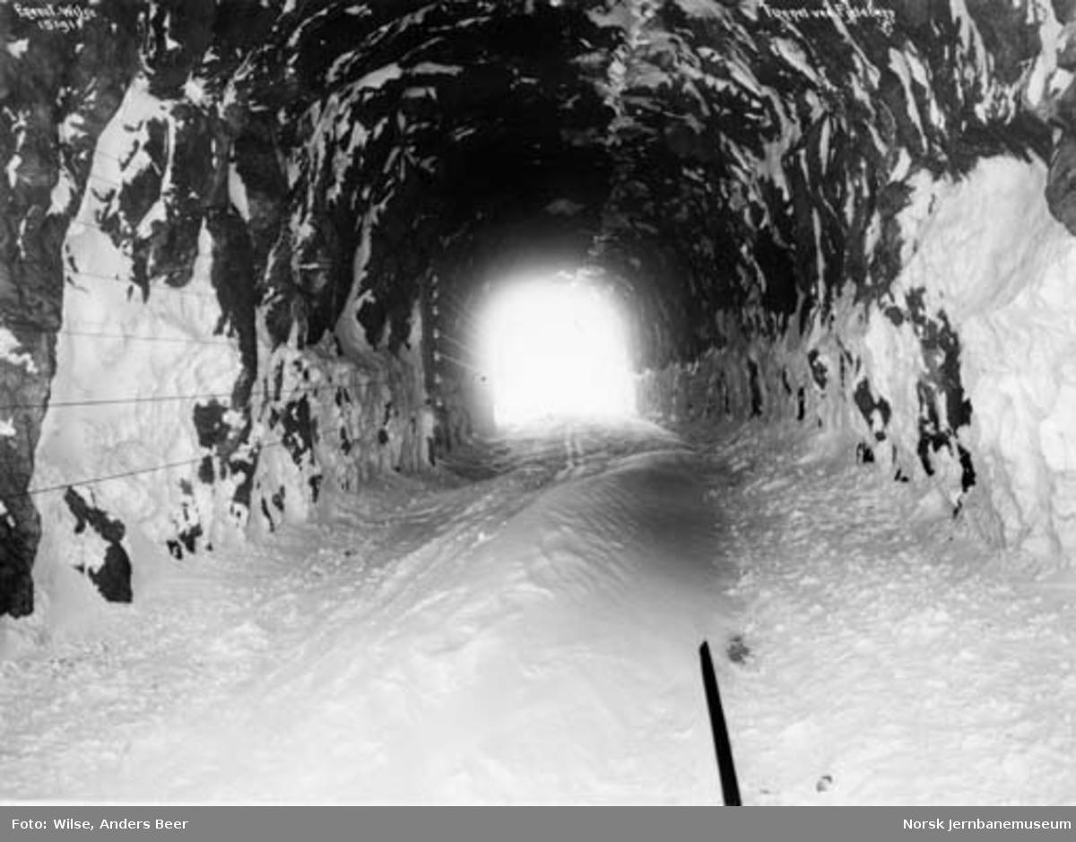 Tunnel ved Fjellberg : innvendig foto med skispor