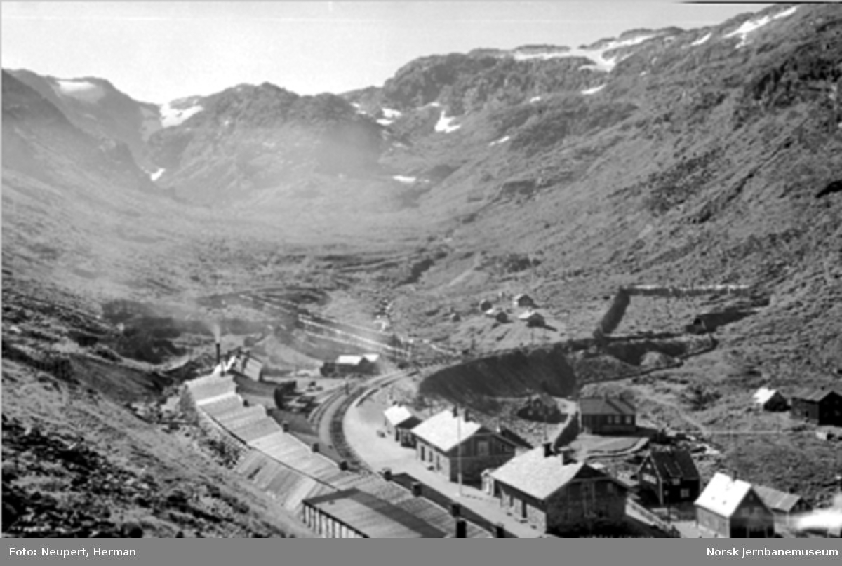 Oversiktsbilde over Myrdal stasjon sett fra nordøst