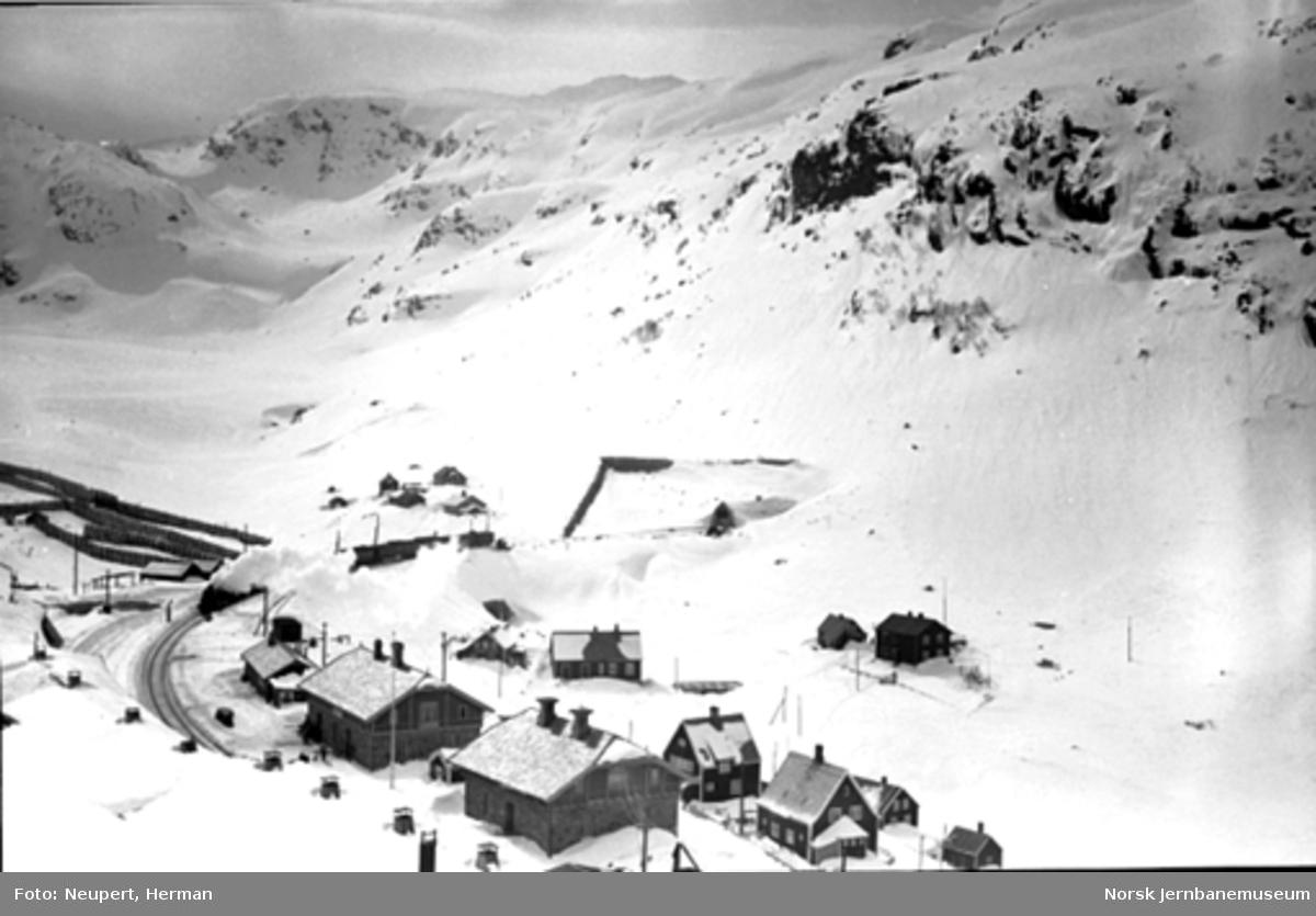 Oversiktsbilde over Myrdal stasjon