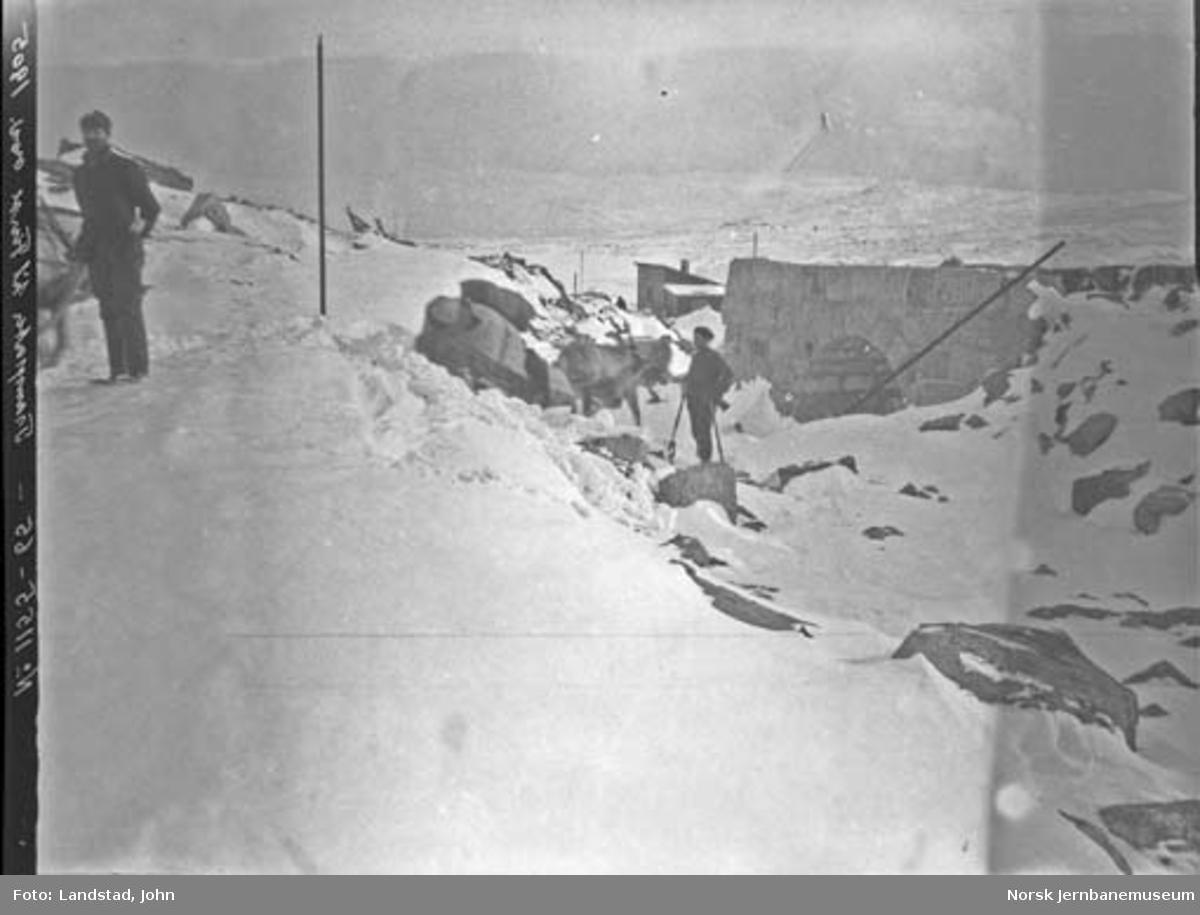 Hest med slede ankommer Finse med forsyninger. Steinhvelvsundergang til høyre i bildet.