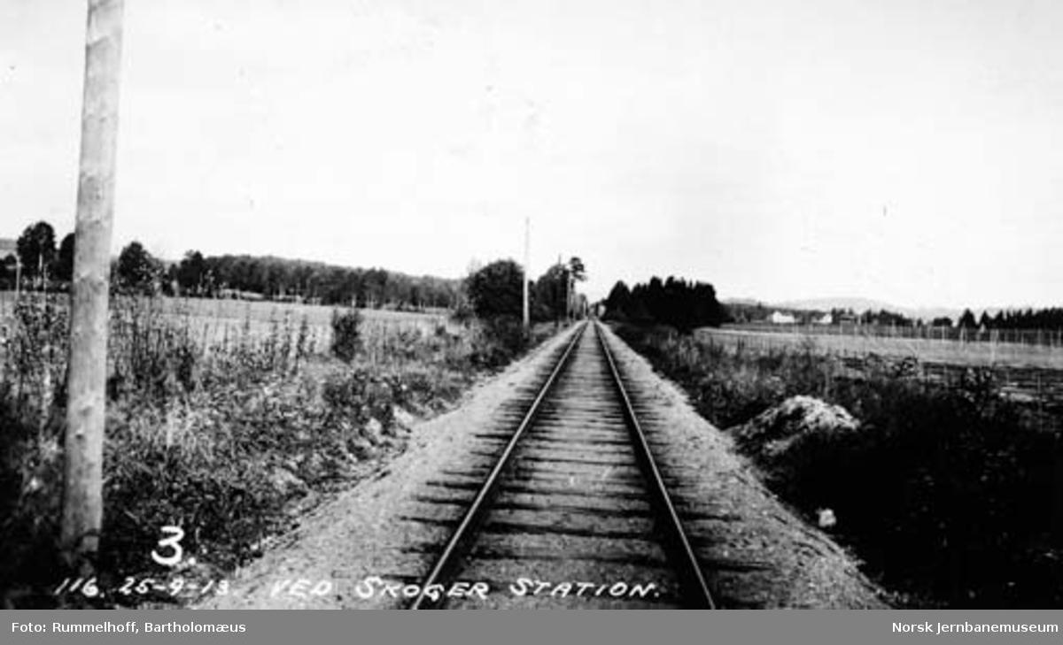 Linjeparti vede Skoger stasjon