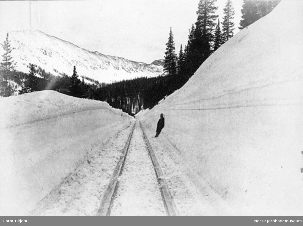 Jernbanelinjen i Alpine Pass, USA