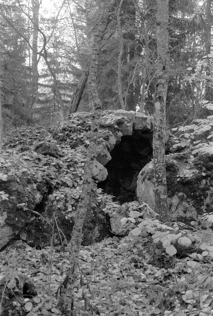 Parkanläggningen, Jumkils - Björnarbo 1:1, Björnarbolund, Jumkil socken, Uppland 1983