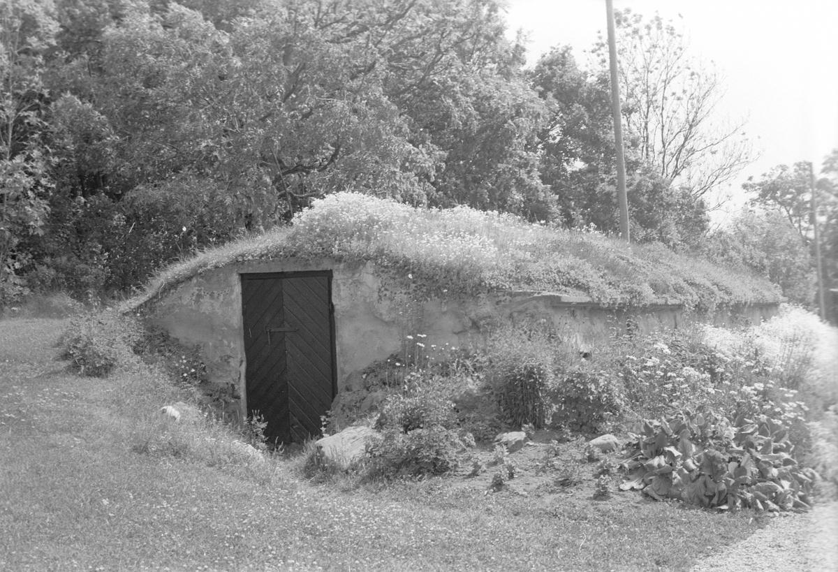 Källare, Österby 4:1, Österby, Läby socken, Uppland 1975