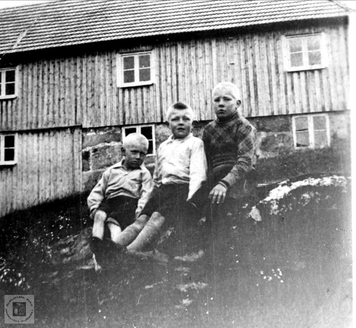 Portrett av Sven, Søren og Søren Haraldstad, Bjelland.