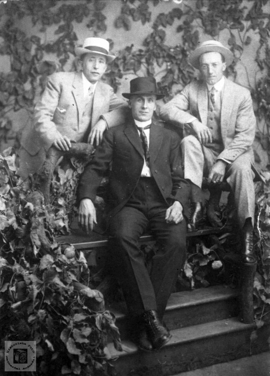 Portrett av 3 menn, minst en fra Haraldstad i Laudal.