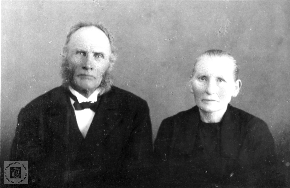 Ekteparet Tarjerd og Ole Midtbø, Bjelland.