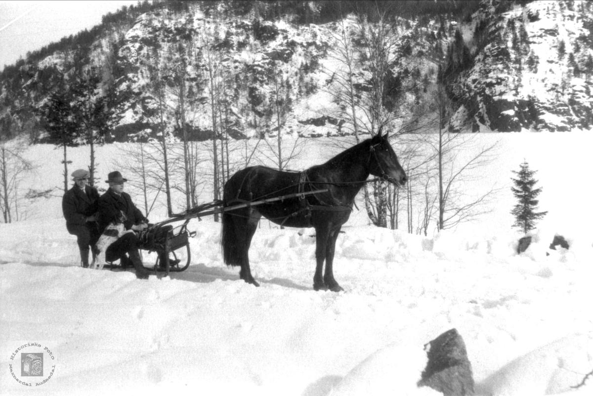 Hest med slede. Lars Skuland og Lodin Skuland.
