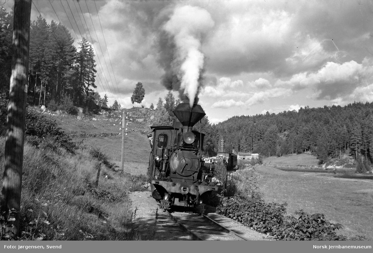 Godstog 5662, trukket av damplokomotiv nr. 2, ved Kiledalen holdeplass
