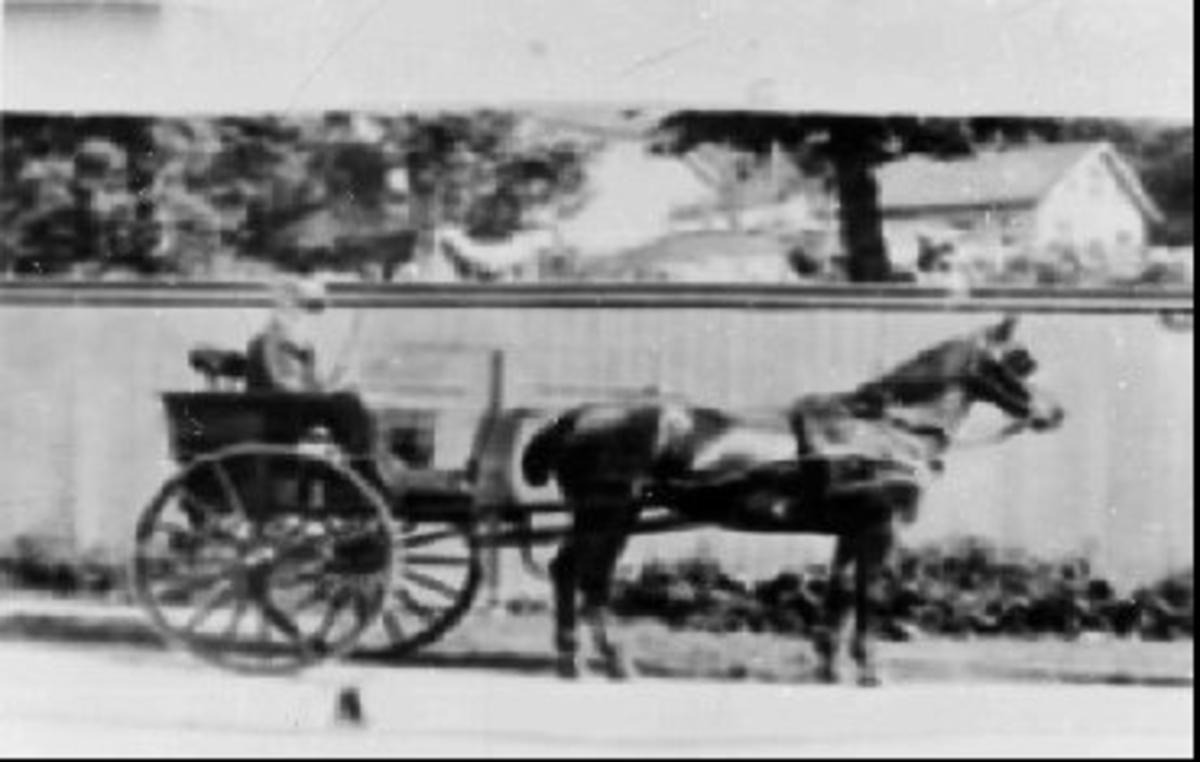 Transport, hest/kjørekar.