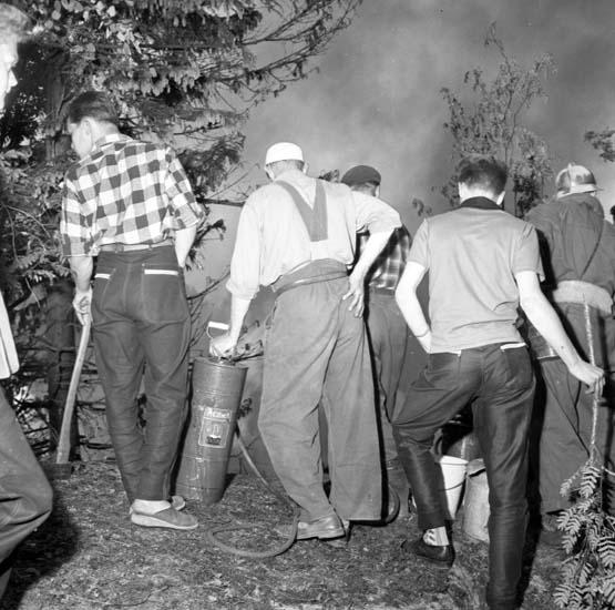 Brandmän och allmänhet bekämpar en eldsvåda i Dalaberg, i norra delen av Uddevalla, juni 1958
