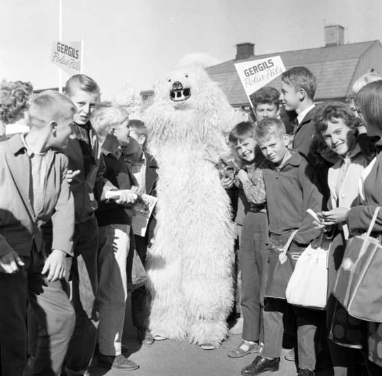 """Enligt notering: """"Isbjörn läroverket 23/9 -59""""."""