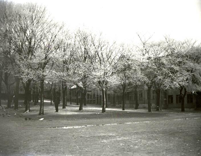 En del misslyckade foton. Däribland rimfrostfoton.1928-30. 12 st. Ej Kopierade.