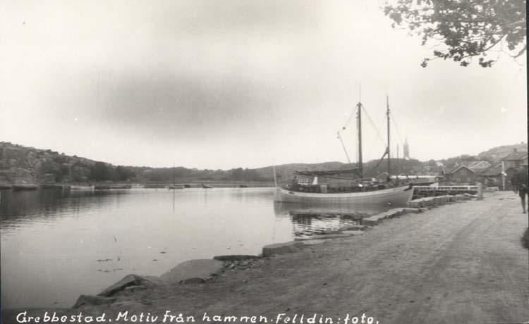Hamnen, Grebbestad