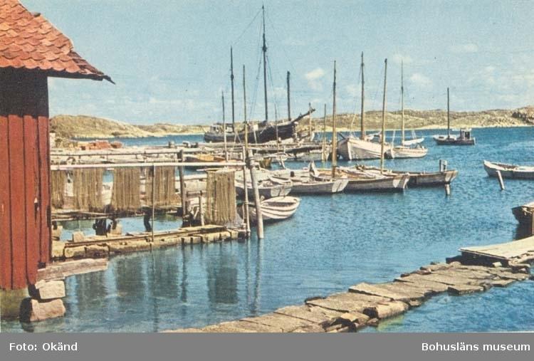"""Tryckt text på kortet: """"Västkusten. Båthamn."""" """"A/B Göteborgs Konstförlag."""""""