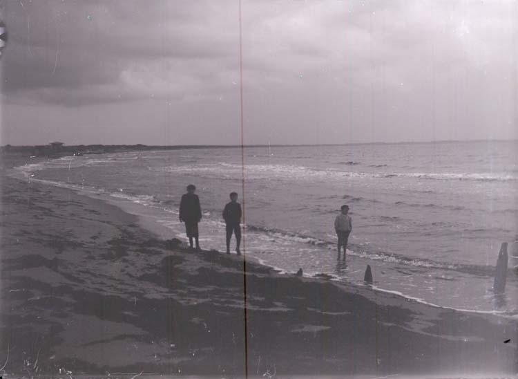 """Enligt text som medföljde bilden: """"Shelderviken, Stranden 31/8 08."""""""