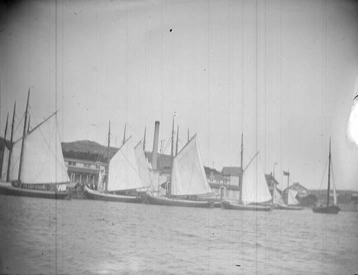 """Enligt text som medföljde bilden: """"Lysekil. Badgästbåtarne vid Badhuset 6/7 1898""""."""