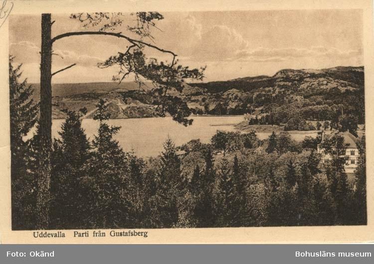 """Tryckt text på vykortets framsida: """"Uddevalla Parti från Gustafsberg."""""""