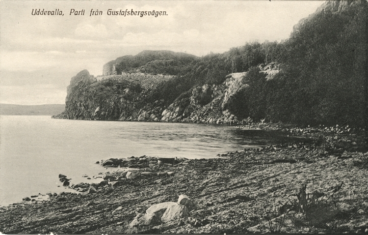 """Tryckt text på vykortets framsida: """"Uddevalla Från Gustafsberg.""""  ::"""