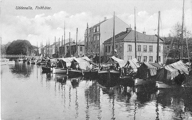 """Tryckt text på vykortets framsida: """"Uddevalla, Fiskbåtar."""""""