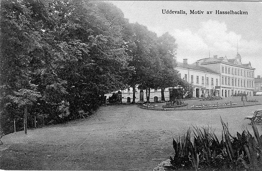 """Tryckt text på vykortets framsida: """"Uddevalla, Motiv av Hasselbacken""""."""