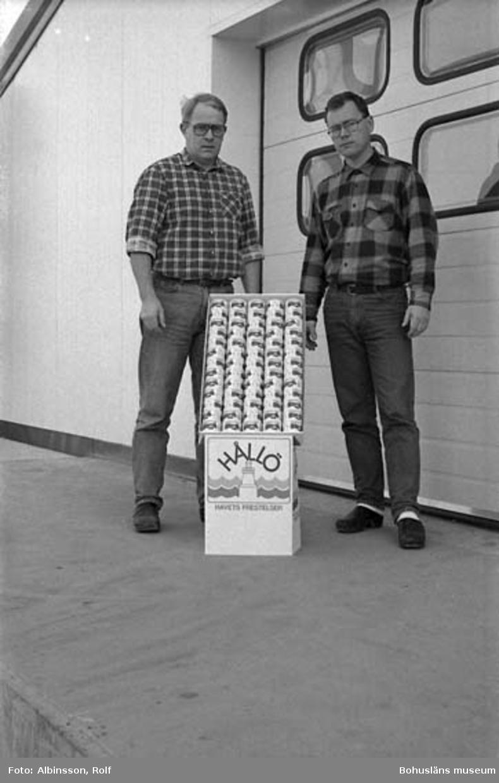 """Enligt fotografens noteringar: """"Leif Stenman till vänster och Christer Stenman till höger. Bröderna som äger familjeföretaget Hållöfisk.""""  Fototid: 1996-03-14.  1996-03-15"""