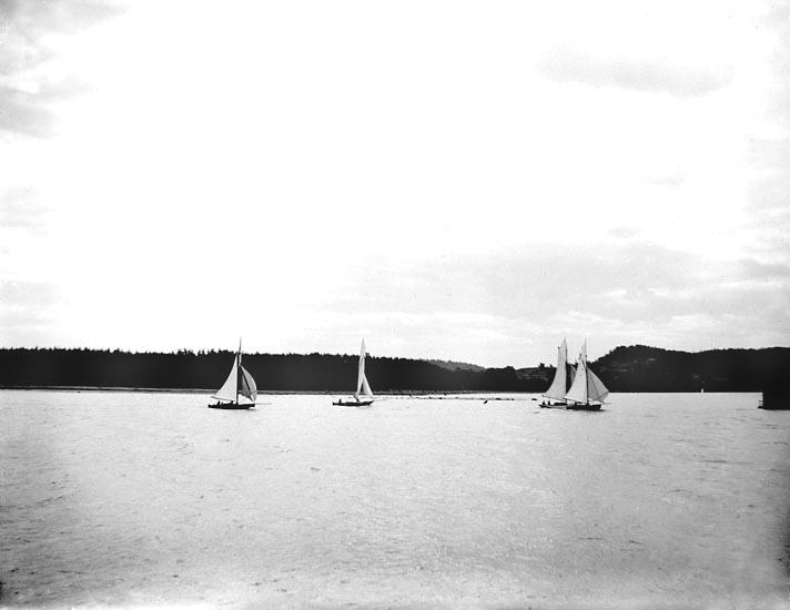 """Enligt fotografens noteringar: """"5 te Klassens båtar.""""  Plats: Sunningen Datum: 26 Juli 1896 Tid: Kl 1.10 e.m. Ljus: Solsken Bländare: No 2 Objektiv: Svenska Express Exponering: Hastighet No: 2 1/2 Framkallning: Hydroechinon, Eikonogen"""