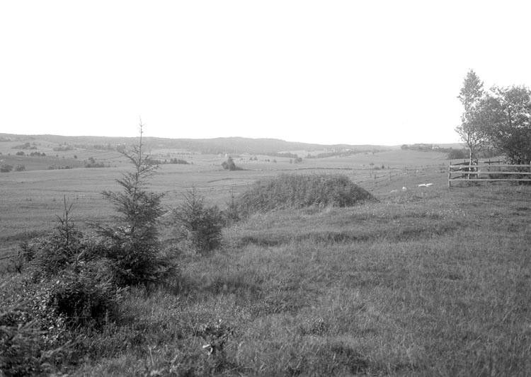 Juli 1924. Landskap väster om Bullaren, Långvallsfors.