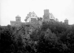 Tureborg augusti 1924