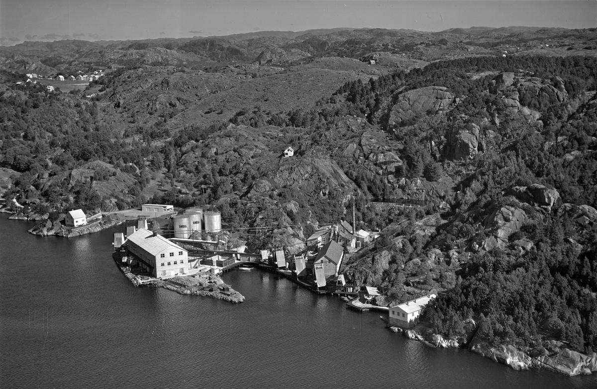 Egersund, Ryttervik sildoljefabrikk