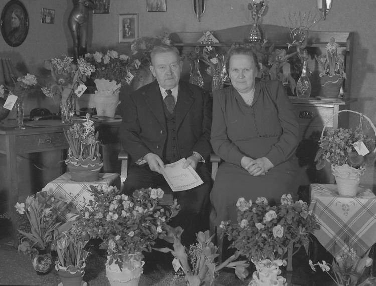 """Text till bilden: """"V. Sandqvist, Liden 33. 1950.02.07""""             i"""