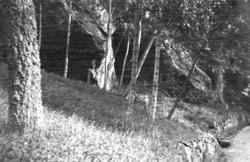 Gyllenstens grotta, Lyckorna.