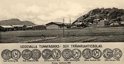 """""""Uddevalla Tunnfabriks- och Trävaruaktiebolag"""""""
