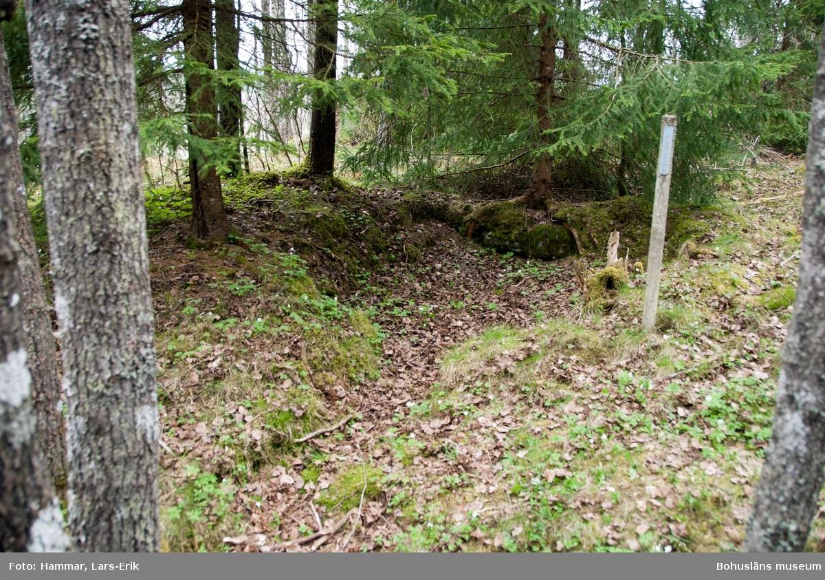 Här på det så kallade Skojareberget bodde på 1800-talet och vid 1900-talets början ett flertal familjer ur resandefolket. De försörjde sig på hantverk och handel som bedrevs i både Sverige och Norge.  Her på det såkalte Skojareberget bodde på 1800-tallet og på begynnelsen av 1900-tallet flere familier av romanislekt. De livnærte seg av håndverk og handel som ble bedrevet i både Sverige og Norge.