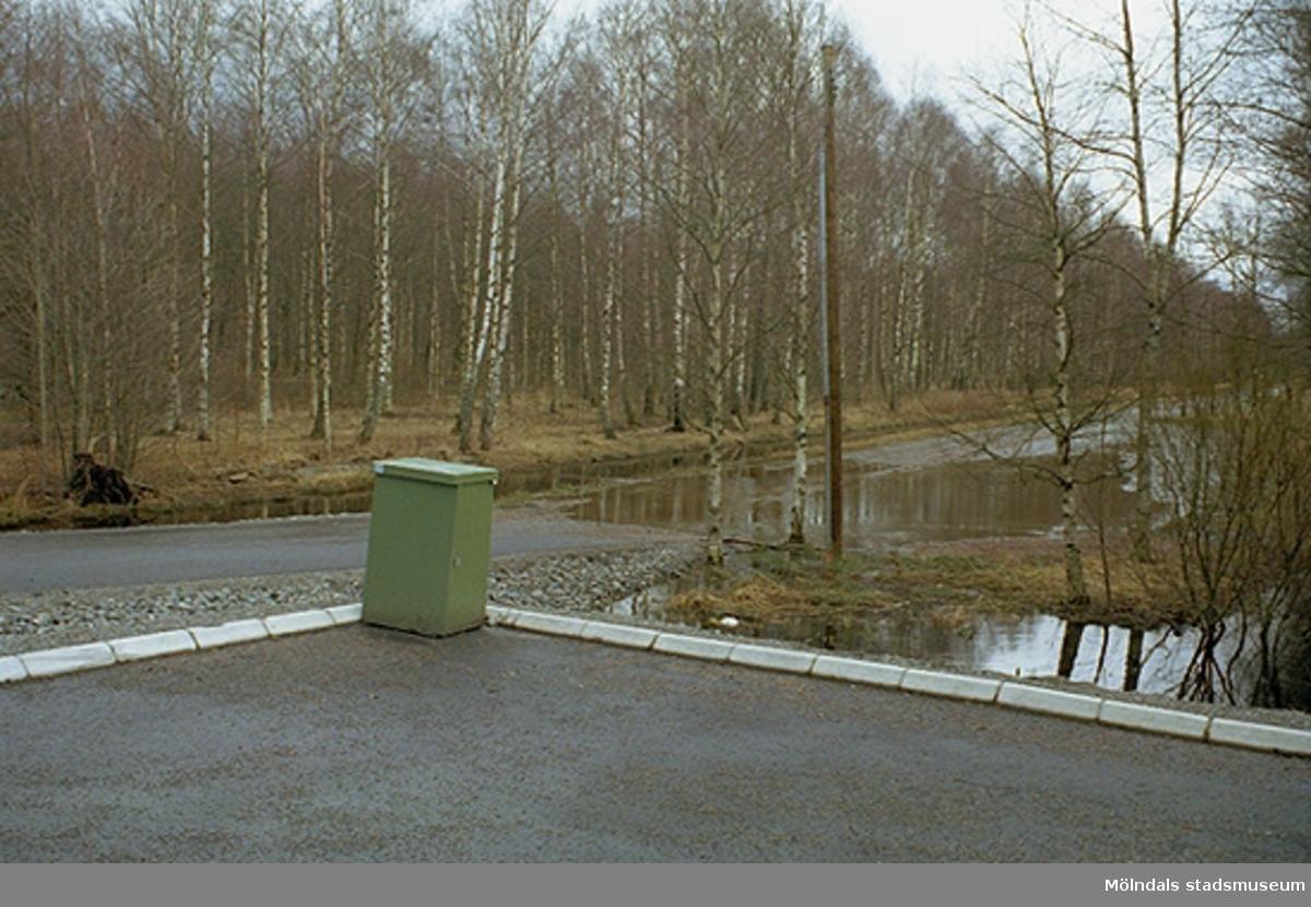 Parkering vid Gunnebo slott. Utsikt från John Halls väg utefter Björkallén, 1995-02-17.