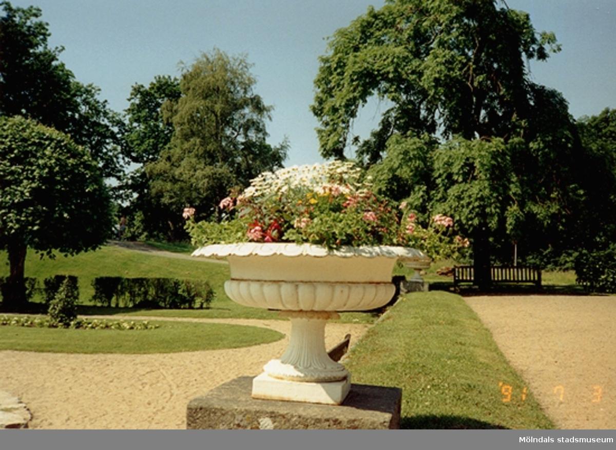 En kruka med blommor i Gunnebo slottsträdgård, juli 1991.